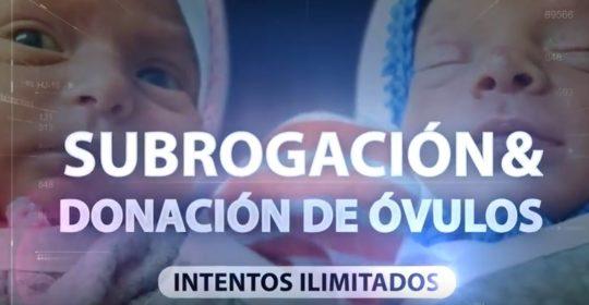 Tratamiento de infertilidad paso a paso en BioTexCom: Maternidad Subrogada y donación de óvulos