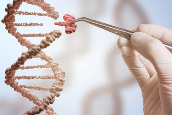 Reino Unido autorizan la modificación genética de embriones humanos