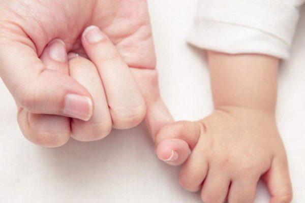 Transplantación del útero o del endometrio, ¿qué es lo más eficaz?