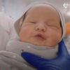 La maternidad subrogada: los bebés están esperando a sus padres